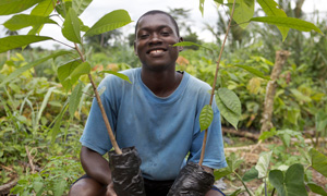 a cocoa and coffee farmer