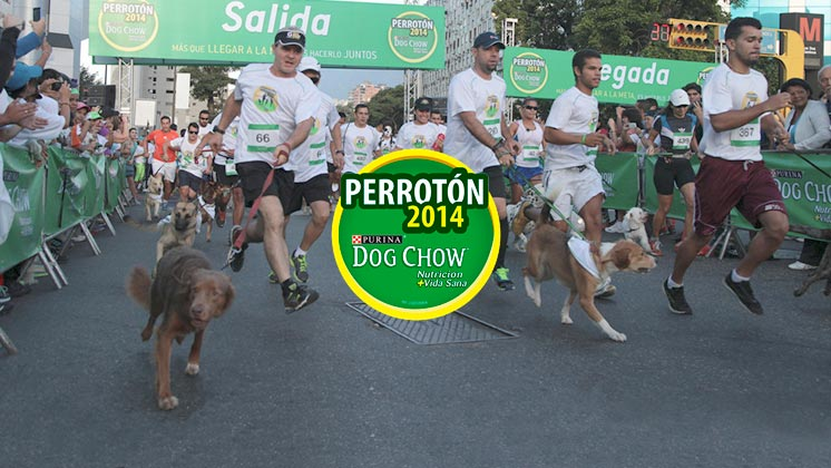 Perrotón 2015 PURINA DOG CHOW®